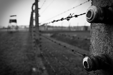 Krakow Super Saver: Auschwitz-Birkenau Tour Plus Jewish History Museum Pass