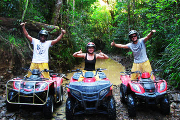Kuranda Rainforest ATV or Argo Tour