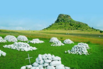 Kwa-Zulu Natal Battlefields Day Tour from Durban