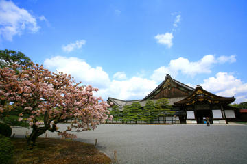 Kyoto Morning Tour - Golden Pavilion, Nijo Castle, Kyoto Imperial Palace including Lunch