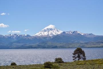 Lake Huechulafquen and Lanín Volcano Day Trip