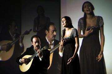 Live Fado Tour in Lisbon