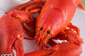 Lobster Dinner and Jazz Night Tour with Japanese Guide - Mybus