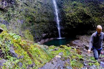 Madeira Levada Walk - Caldeirao Verde