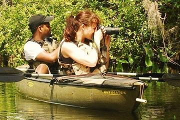 Mangrove Forest Kayak Eco-Tour in Florida Everglades