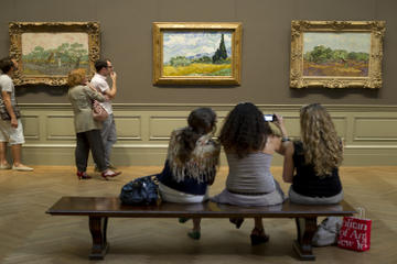 Metropolitan Museum of Art Highlights Tour with Skip-the-Line Access