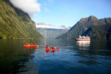 Milford Sound Cruise with Optional Kayak Tour