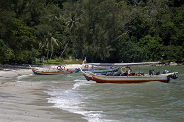 Monkey Beach Excursion including BBQ Lunch from Penang