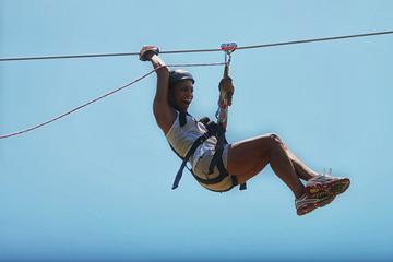 Monkey Jungle and Zipline Adventure from Puerto Plata