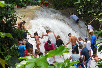 Montego Bay Shore Excursion: Blue Hole and Dunn's River Falls Tour