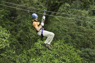Montego Bay Shore Excursion: Zipline and Jungle River Tubing