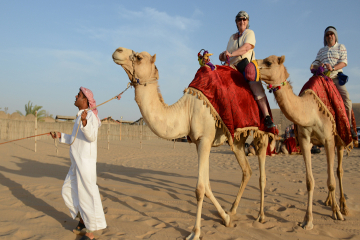 Morning Camel Trekking Safari from Dubai
