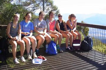 Mount Warning Day Trip from Byron Bay Including BBQ Lunch