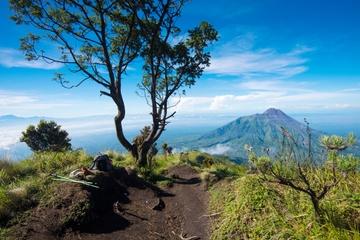 Mt. Merapi Slopes Hiking Day Trip from Yogyakarta