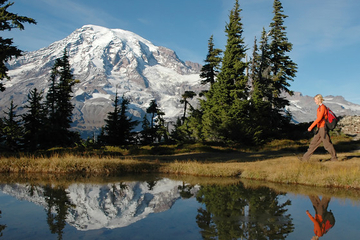 Mt Rainier Small-Group Hiking or Snowshoeing Tour with Lunch
