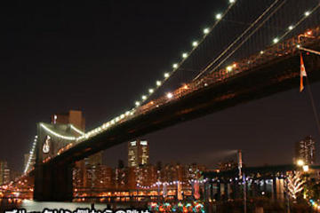 New York City Night View Tour (Japanese Guide) - Mybus
