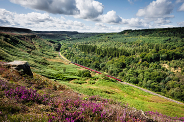 North York Moors Small-Group Day Trip from York