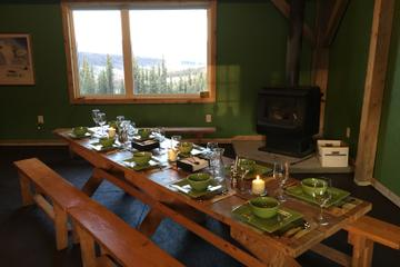 Northern Lights Experience and Cabin Dinner