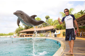 Nuevo Vallarta Dolphin Trainer for a Day