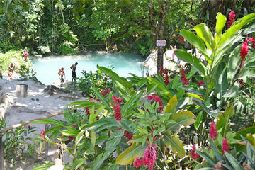 Ocho Rios Blue Hole Tour Plus Shopping