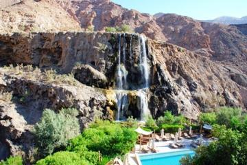 Overnight in Ma'in Hot Springs from Amman