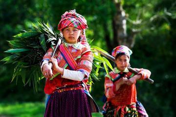 Overnight Sapa Trekking Tour from Hanoi with Homestay