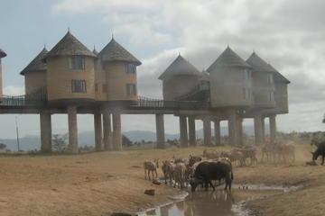 Overnight Tsavo East and Taita Hills Safari