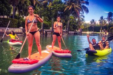 Paddleboard Rental in Miami