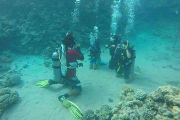 PADI Course: Padi Open Water Diver Course
