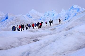 Perito Moreno Glacier Ice Trek Day Trip from El Calafate