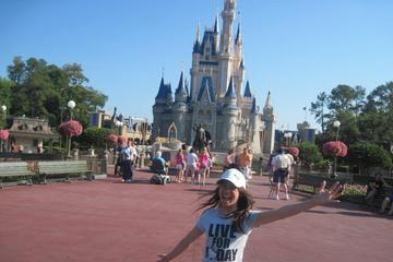 Personal Theme Park Assistant: Walt Disney World