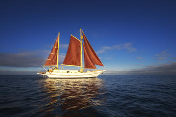 Port Phillip Bay Sailing and Yarra River Cruise by Traditional Timber Tall Ship from Melbourne