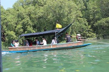 Pranburi Mangrove Swamp and River Cruise