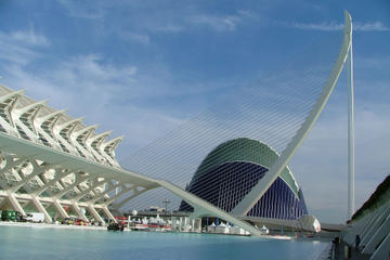 Private 4-Hour Shore Excursion in Valencia