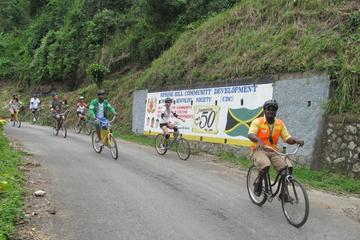 Private Bicycle Tour of Jamaica's Blue Mountains from Negril and Grand Palladium
