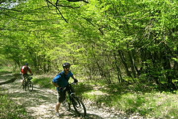 Private Cycling Tour in Rkoni from Tbilisi