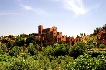 Private Day Trip to High Atlas Mountains and Ourika Valley from Marrakech