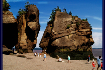 Private Full Day Tour to Hopewell Rocks from St John