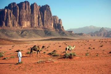 Private Full Day Tour to Wadi Rum from Dead Sea