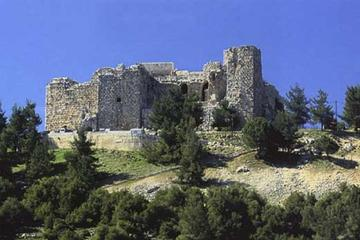 Private Half Day Tour to Ajloun from Amman