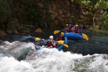 Private Rio Bueno River Adventure from Montego Bay