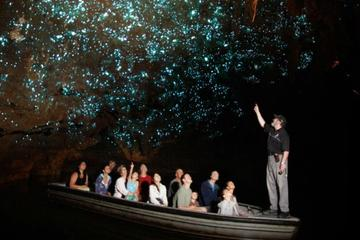 Private Tour: 4-Day North Island Highlights Tour including Waitomo Caves and Hobbiton