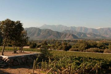 Private Tour: Aconcagua Valley Day Trip from Valparaiso Including Lunch