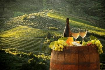 Private Tour: Arrábida Wine and Landscape Tour with tastings