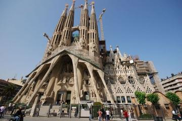 Private Tour: Barcelona Full-Day Sightseeing Tour