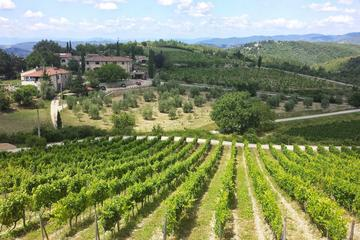 Private Tour: Chianti Region Tour by Minivan