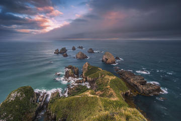 Private Tour: Dunedin to the Catlins