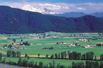 Private Tour: Fraser Valley Wine Tasting Tour