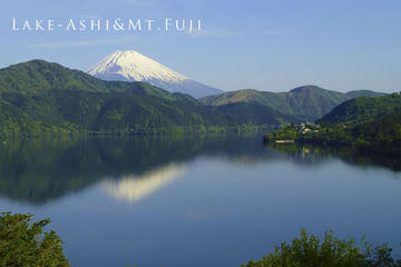 Private Tour: Hakone Sightseeing with Optional Hot Springs Experience