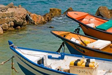 Private Tour: Mediterranean Coast Day Tour from Tel Aviv